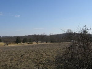 View of reverse slope of Benner's Hill. Union soldiers would have deployed in the area on the late afternoon of July 1st. These were troops of 1st Division, 12th Corps. Wolf's Hill is in the distance as is the Benner homestead, which is in private hands.