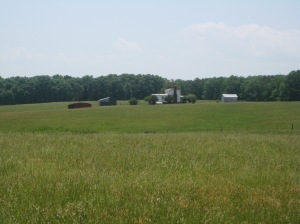 The Ogg Farm west of Trevilian Station. The second day's fighting revolved around this area.