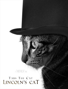 tabs-lincolns-cat