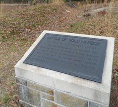 """Field of Heaviest Losses"" at Cold Harbor"