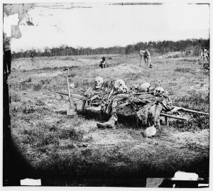 Burial parties collecting and interring the dead at Cold Harbor after the war. Courtesy of the Library of Congress.
