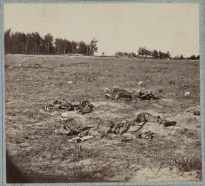 Dead on the Gaines Mill Battlefield  (LOC)