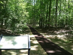 A modern view of the Mountain Road. Jackson's party rode along this pathway on the evening of May 2, 1863. In recent years, the National Park Service has worked diligently to rehabilitate what remains of the road.