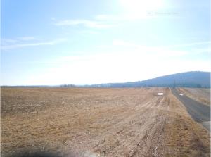 From Crittenden Lane looking towards Cedar Mountain.