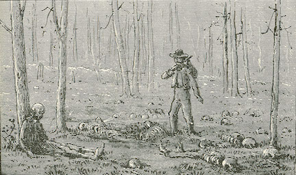 Revisiting the Wilderness Battlefield