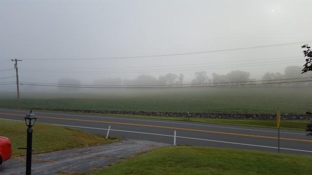 fog-830-am