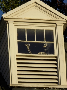 McGuire Home Skeleton