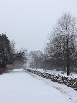 frsp-sunken-road-snow-2017