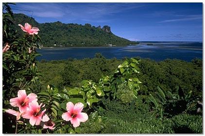 Pohnpei scene