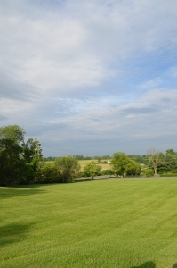 View from Vineyard Hil - Upperville