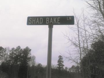 Shad Bake Lane (EA)